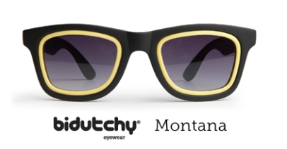 bidutchy-montana-home-new1